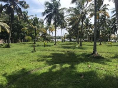1 acre land for sale near Perumpally bridge, Arattupuzha, Alappuzha.