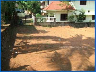 8.25 Cent Residential Land for sale at Aluva, Ernakulam.