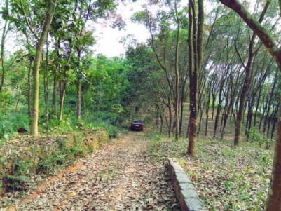 Residential Land for sale at Perumballor, Muvattupuzha