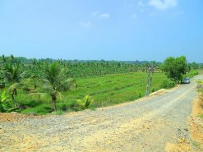 3.56 Acres of Agricutural / Residential land at Kumarakom,Kottayam.
