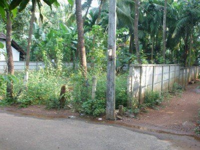 10 Cent Residential Plot / Land for sale at Kanimangalam, Thrissur.