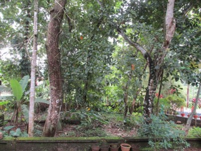 1.5 Acres of Land with an old Traditional House for sale at Chengannur, Alappuzha