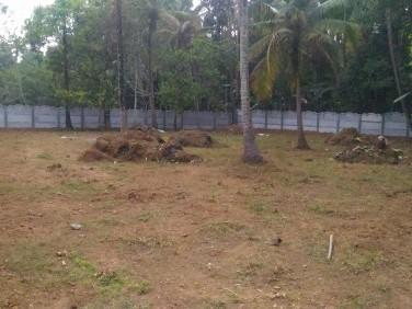 plot for sale 15 cent near Thrissur-kodakara-Mala route,Alur location