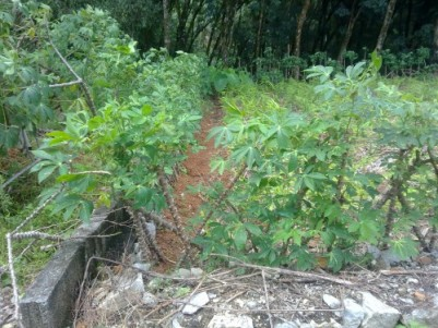 4.5 Cents of  Residential  land for sale at Puliyarakonam,Thiruvananthapuram.