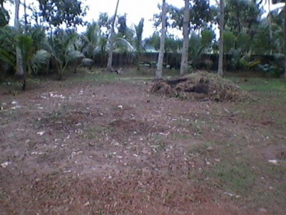 22 Cent Residential Land for sale at Kattanam,Kayamkulam,Alappuzha.