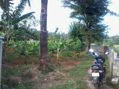 10.5 Cents of  Good residential plot for sale at Thalore,Thrissur.