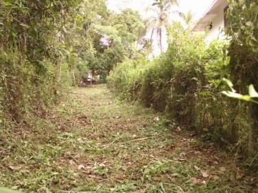 18 Cents House Plot for Sale at Ottappalam, Palakkad