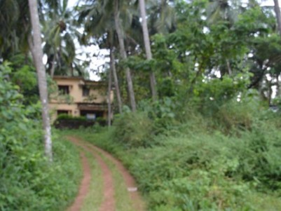 60 Cent Commercial Property for sale at Kottakkal Town,Malappuram.