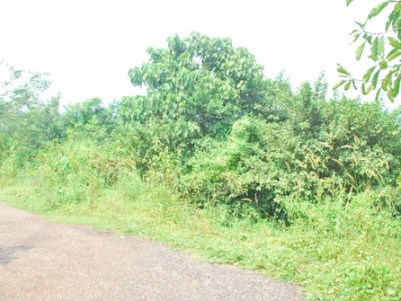 61 Cents of Prime Land for sale in the heart of Ottapalam, Palakkad.