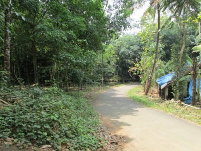 Residential land with 1000 sq.ft house at Pala, Location Pizhaku