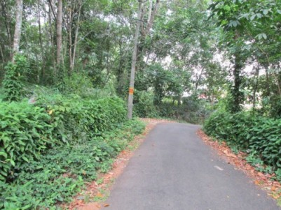 Great property for sale at Ranni, Pathanamthitta.