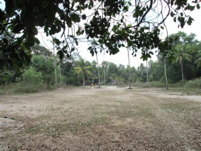 1.8 Acres of Plain Land for sale at Puthanambalam,Cherthala,Alappuzha district.