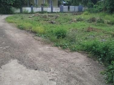 7 Cent house plot for Sale at Kaniyampuzha,Vyttila,Ernakulam