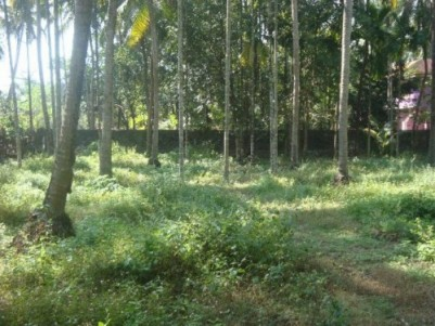 20 Cents of residential land for sale at Nilambur,Malappuram.