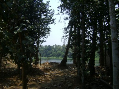 33 Cent River Side plot for sale at Chalakkudy,Thrissur.