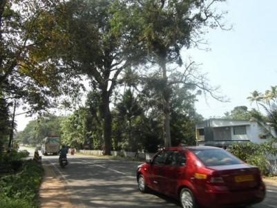 18 Cent Residential land for sale at Nadakkapadam,Changanassery,Kottayam.