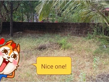 PLOT FOR SALE AT NILESHWARAM,KASARGOD  IN THE HEART OF THE CITY