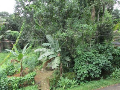 Residential Land for Sale at Pathanamthitta