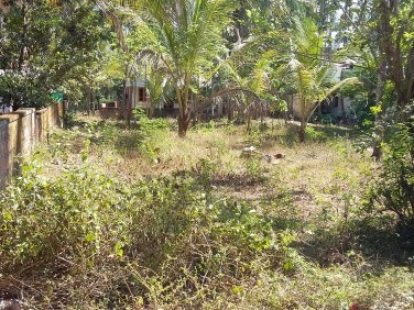 10 Cent Residential land at Mangatoor, Malappuram