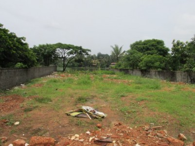 23 cent residential land for sale at Muringoor, Chalakkudy, Thrissur.