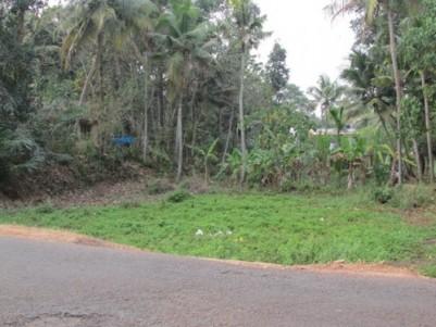 Residential land for sale at Chottanikkara,Ernakulam