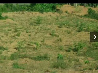 1acr 30cent land near neelambari hospital in Thamarakulam.
