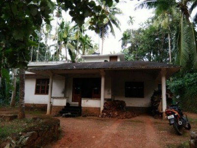 Spacious Vaastu Compliance Independent house in Malabar