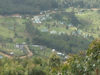 plantation land for sale