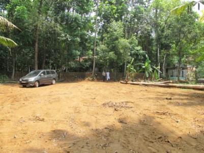 58 Cents Land for sale in Elangavam, Varapetty,  Kothamangalam