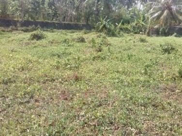 30 Cents of residential land for sale at Nilambur,Malappuram.