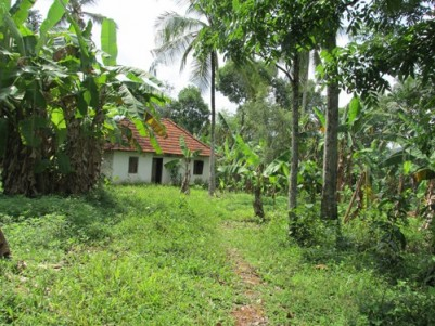 15 Cents of Residential Plot for sale at Chankoor,Pathanamthitta.