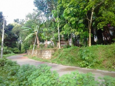 24 Cent  Land for residential purpose located 1.5 km away from M.C Road Kulanda