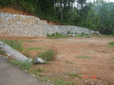 ideal residential land