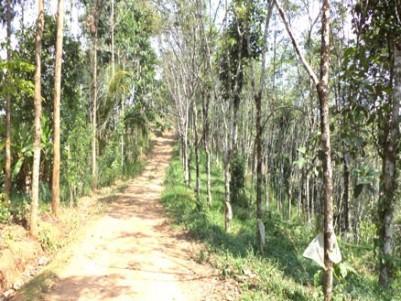 7.07 Acre old LA Pattayam land for sale at Puthakali, Near Parathodu, Adimali, Idukki.