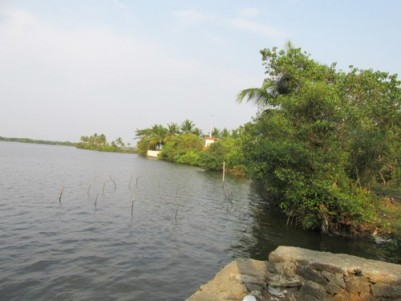 4.5 acres of water frontage land for sale at Cheppanam, Ernakulam.