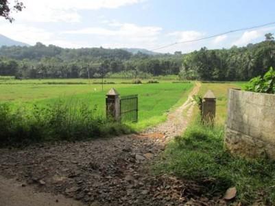 1.41 Acre land for sale at Anchiri near Thodupuzha,Idukki.