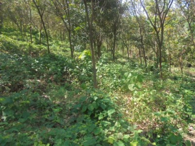 8 Acre residential land for sale at Kannur.