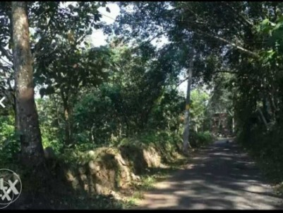 10/20 cent plot for sale in nedungadappally,mallapally