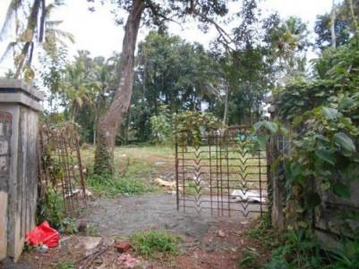17 Cent Commercial Land for sale at Mulamkadakam,Kollam.