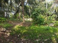 40 Cents of land for Sale at Thykoodam, Vyttila, Ernakulam