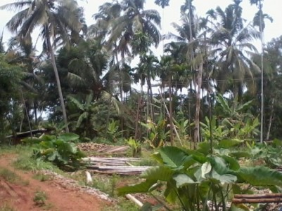 40 Cents of  land for sale at Edakalathur,Thrissur.