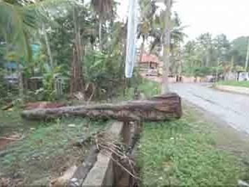 45 Cent Land for sale at Near Malayinkeezhu,Karipur,Thiruvananthapuram.