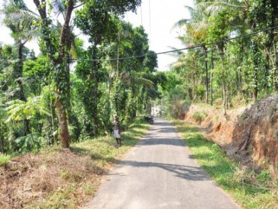 ORGANIC FARM LAND FOR SALE