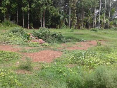 Land near Kunnamkulam