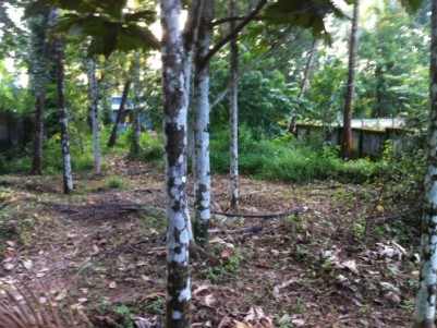 10 Cent Residential Land for sale at Manakkody,Thrissur.