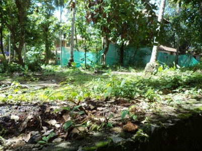 6 Cents of residential land for sale at Kunduparamba,Kozhikode.