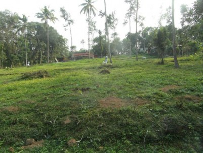 67 Cents of Residential Land for sale at Vagathanam,Kottayam.