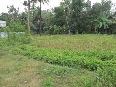 House Plots for sale at Alangad,Aluva,Ernakulam.
