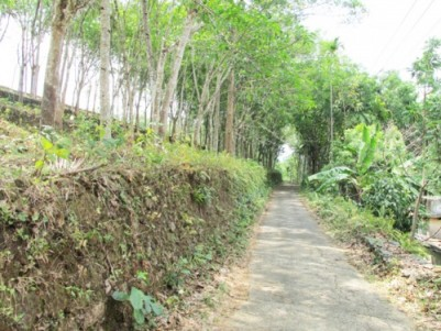1.05 Acre Rubber Estate for Sale at Payyanamon,Konni,Pathanamthitta.