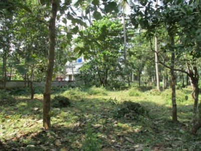 Residential Land for Sale at Wadakkanchery,Thrissur